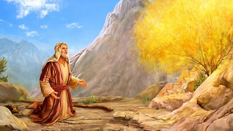 призвание Бога